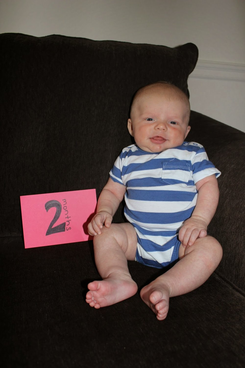 Robbe | 2 months