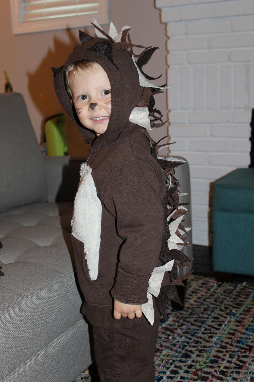 Halloween 2014 - Hedgehogs