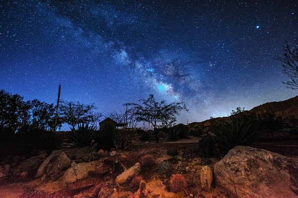 Desert Breeze Oasis cottage under the stars - JoshuaTreeVacationHomes.com