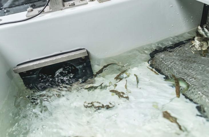 Best mulig miljø for fisk i oppdrettsanlegg på land.  Artec Aqua leverer produkter, systemløsninger og nøkkelferdige anlegg til akvakulturnæringen.