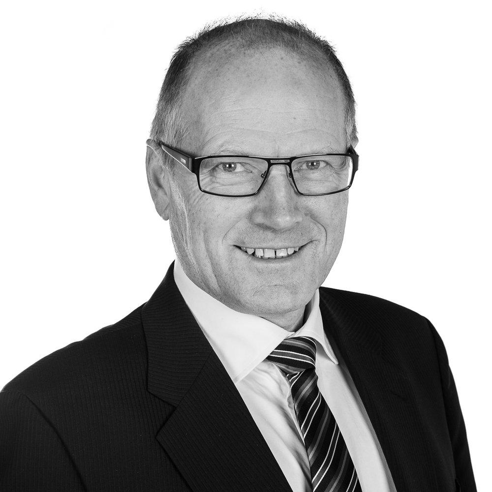 Harald Valved 2014.jpg