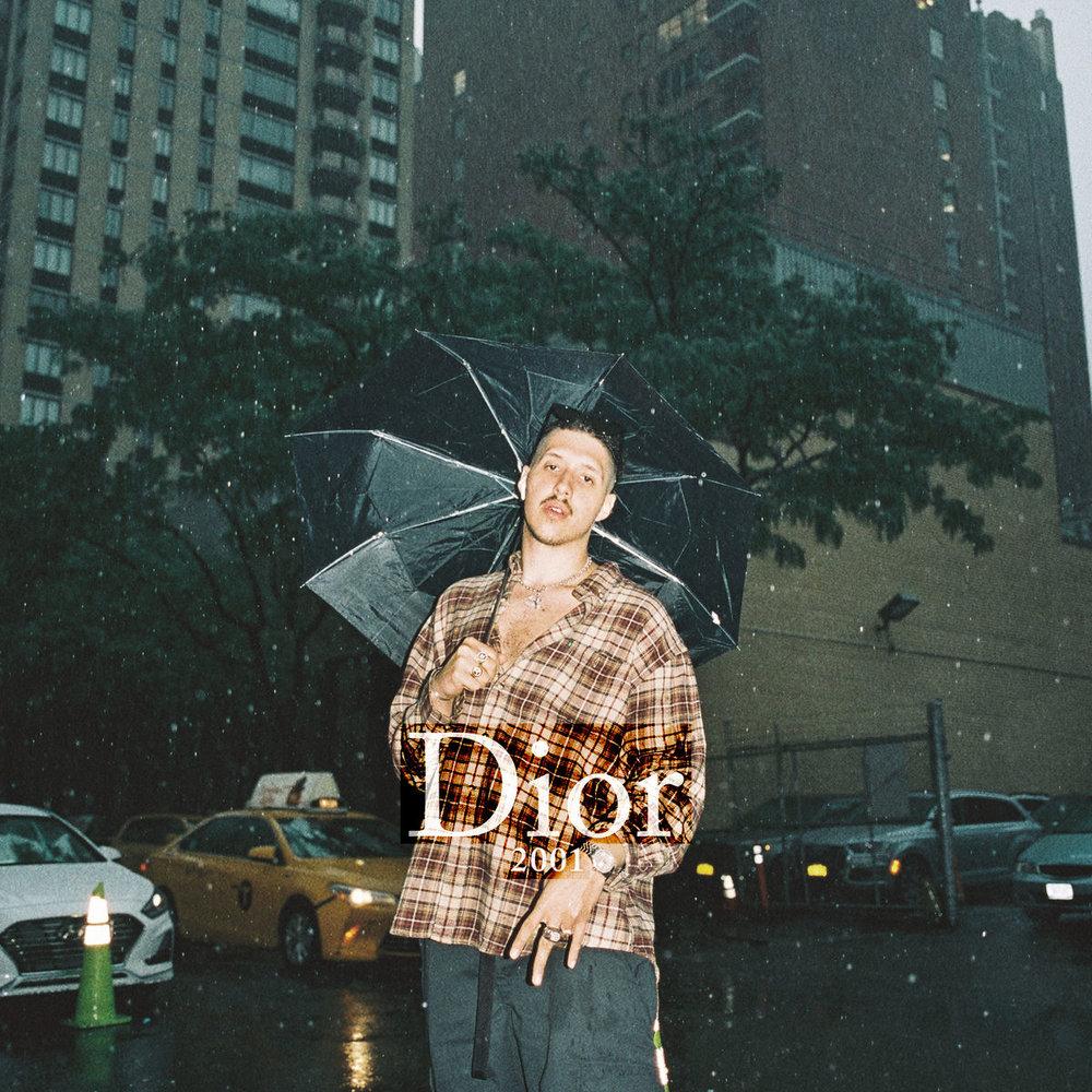 rin-dior_2001_s.jpg