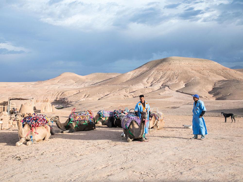 Marrakech-Camel-Ride-2.jpg