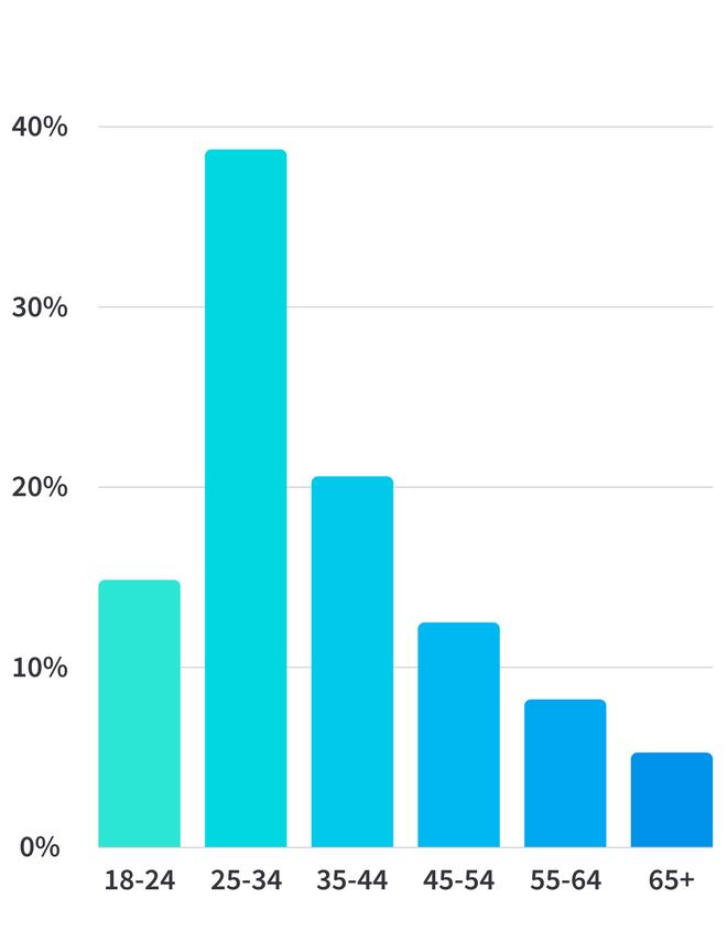 EMEA breakdown by age500x650.png