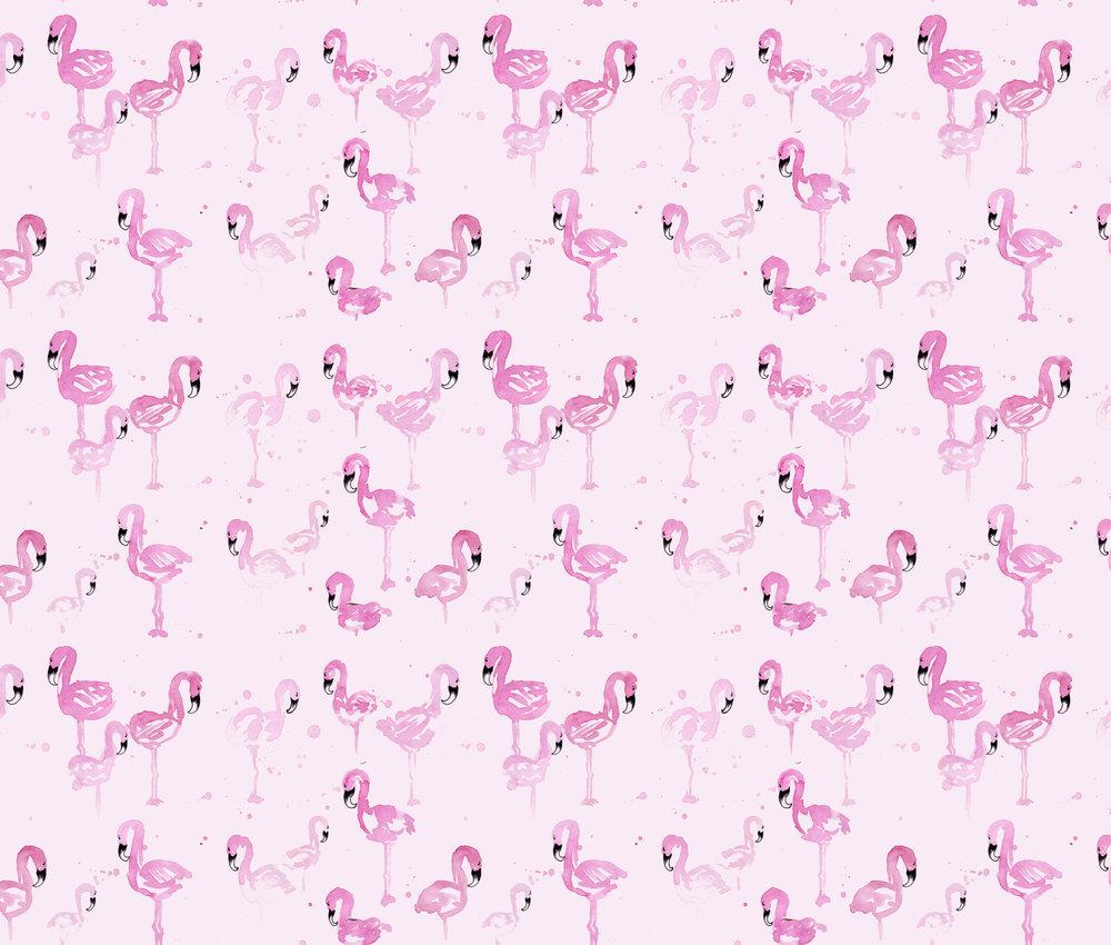 Flamingai.jpg
