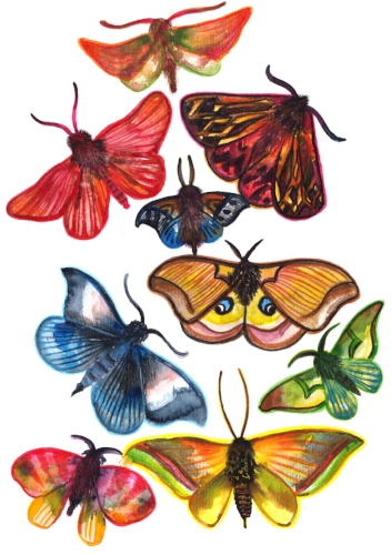 Creative activities. Journaling and collage making. Free download - butterfly clip art!