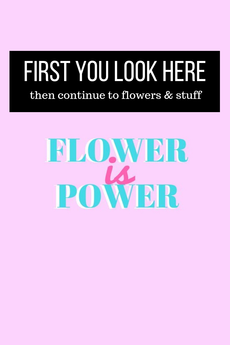 Flower is power image created with Canva