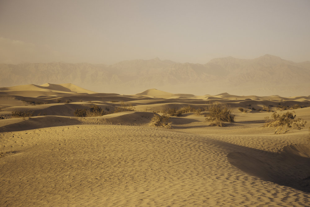 Mesquite flat sand dunes / California