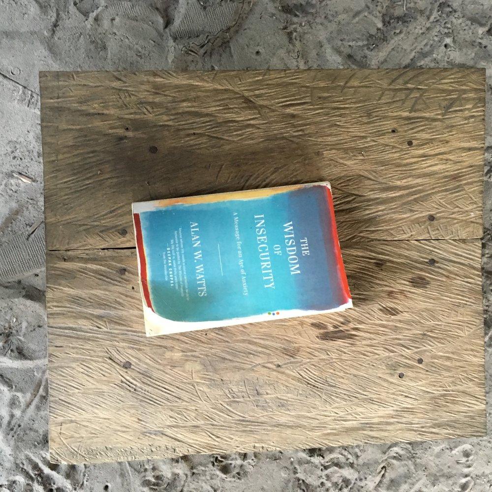 Книга в тему.jpg