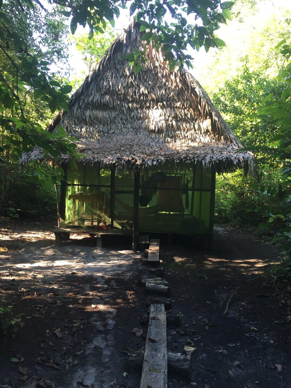 Изолированная тамбо в глубине джунглей