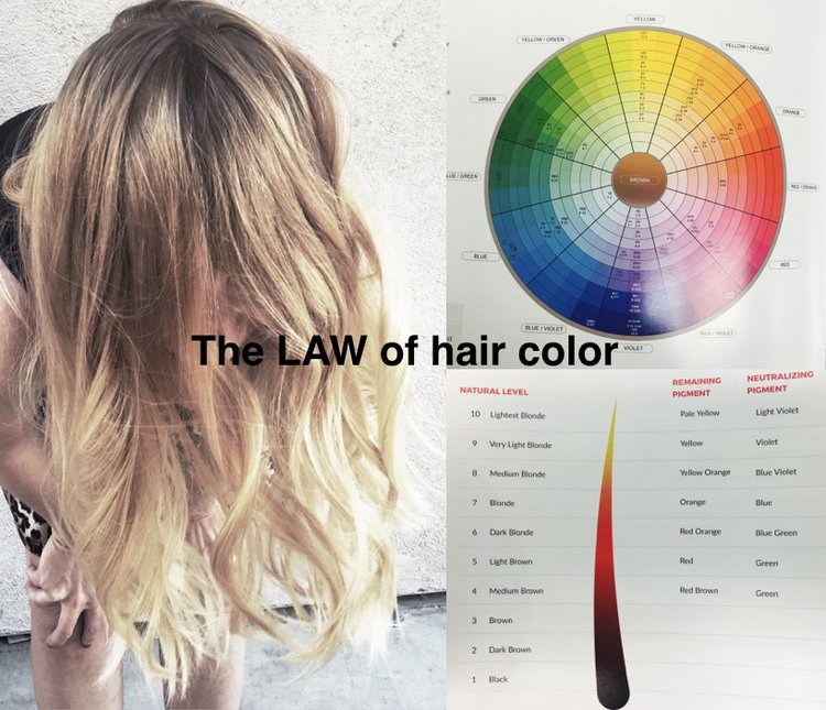 Balayage hair Painting color & classes and education hands on, Hair ...