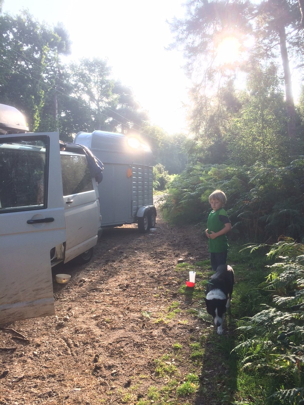 2017-august-vw-horsebox-forest-humanKINDER.JPG