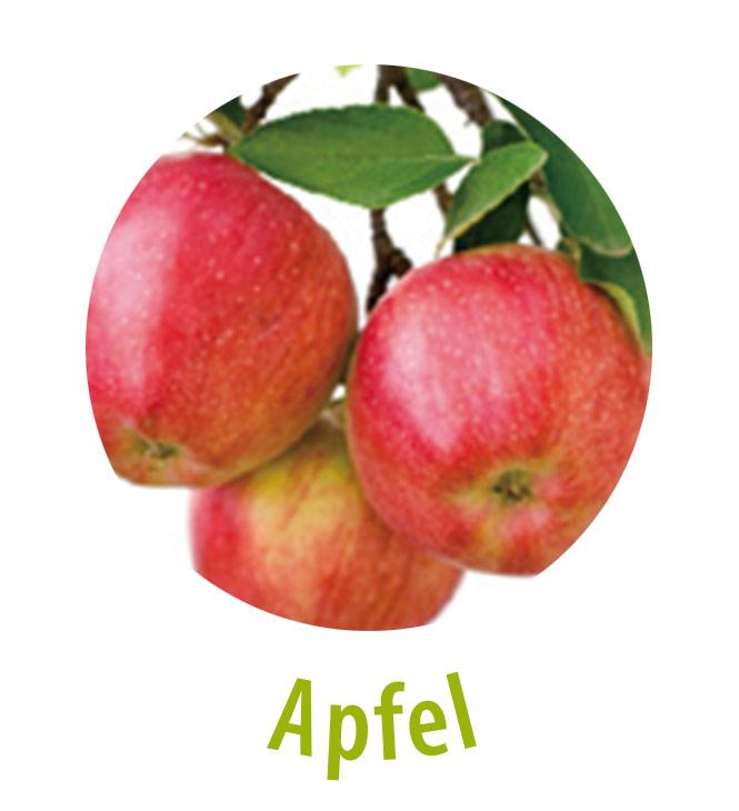 Ein Apfel beinhaltet über 30 Vitamine und Spurenelemente, Kalium und Mineralstoffe wie Phosphor, Kalzium, Magnesium und Eisen. Er enthält Fruchtsäuren und Vitamine wie Provitamin A, die Vitamine B1, B2, B6, E und C, Nitacin und Folsäure. Seine Inhaltsstoffe schützen die Haut vor UV-Strahlen und machen sie weich und geschmeidig.