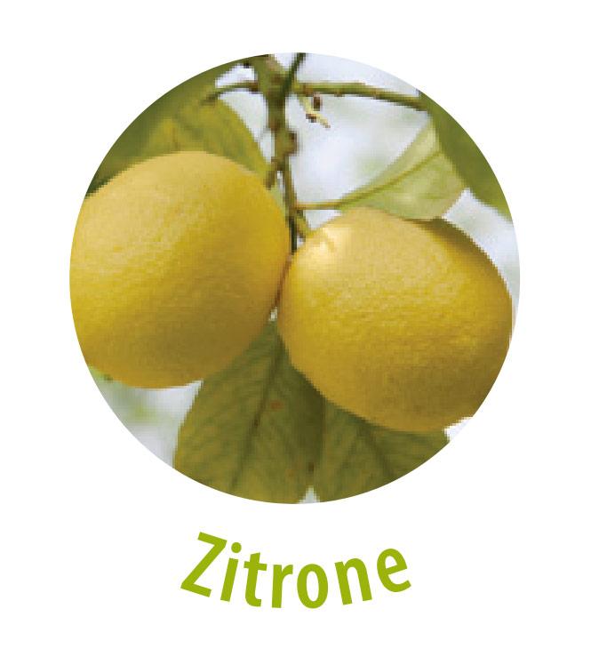 Die Zitrone enthält einen hohen Vitamin-C-Gehalt und Antioxidantien. Diese Frucht wirkt unter anderem antibakteriell, belebend, entzündungshemmend und stärkt dabei das Immunsystem. Die Zitrone hilft gegen Warzen sowie Fußpilz und reinigt die Haut.