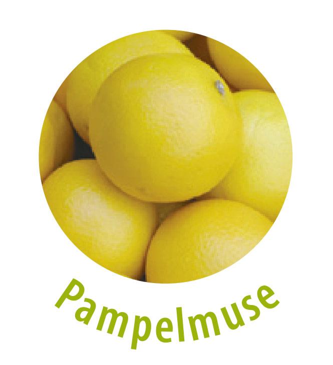 Die Pampelmuse weist ebenso wie die Zitrone und die Apfelsine einen hohen Vitamin-C-Gehalt auf.