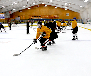High School Hockey Camps