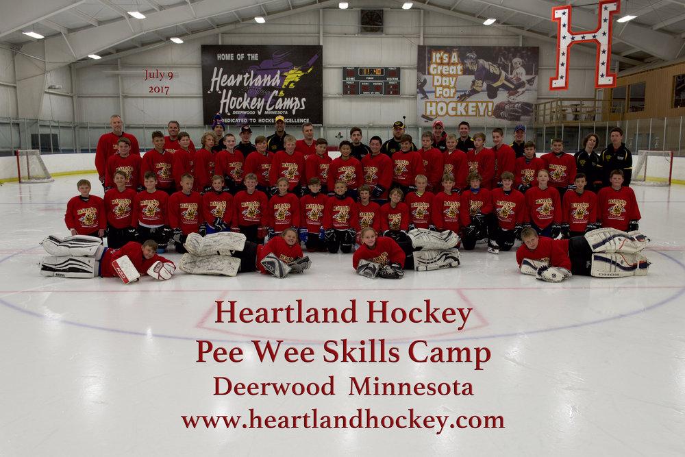 Pee Wee Skills July 9 2017fm.jpg