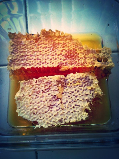 BEECASSO HONEY