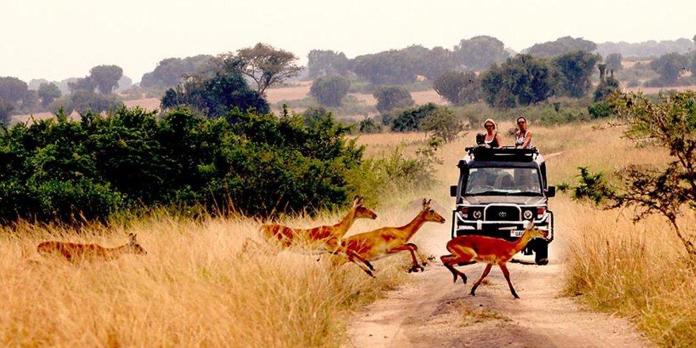mweya-safari-lodge-queen-elizabeth-national-park-uganda-2673.jpg