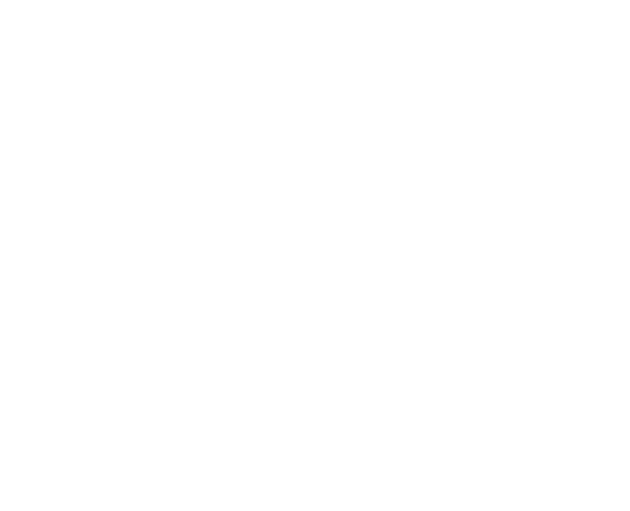 SEBA International