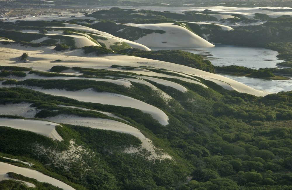 Genipabu Dunes