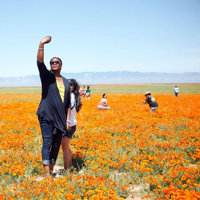 Selfie wonderland. 🌼 #antisocialla #losangeles #poppies #superbloom #lancaster