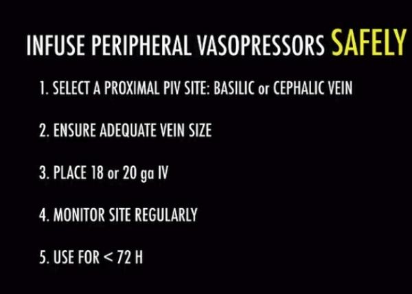 Infuse peripheral vasopressors safely.jpg