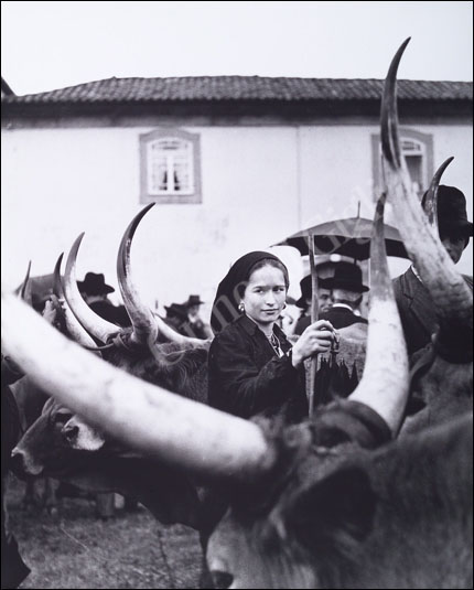 Young girl and oxen - 1957