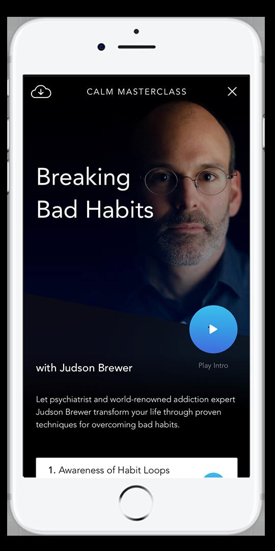 Breakign Bad Habits Phone Mock Up.png