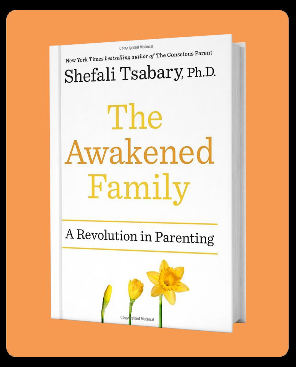 The_Awakened_Family_Cover_Original.jpg