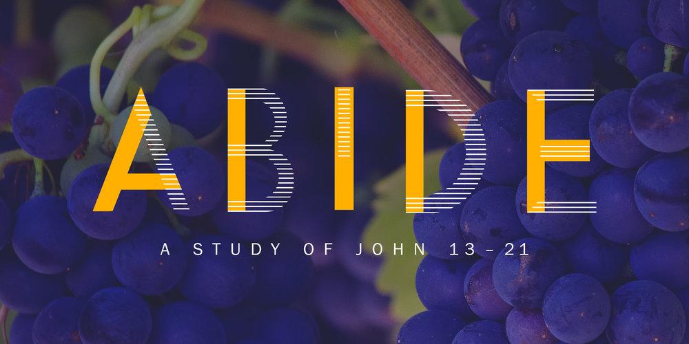 Abide_series-07.jpg