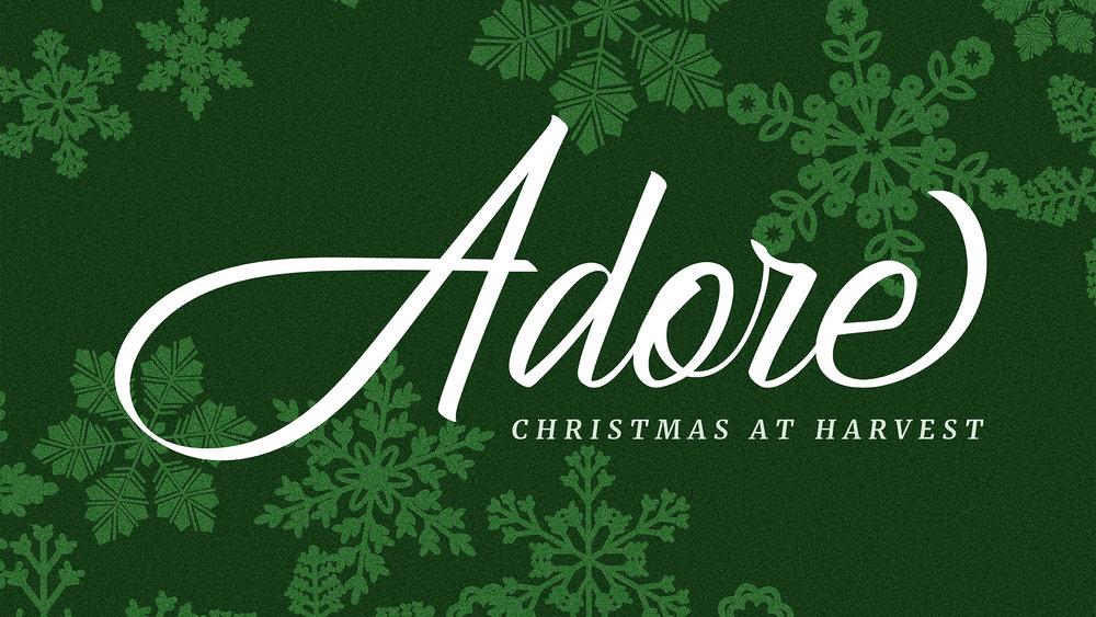 Adore_Anderson Title_WEB.jpg