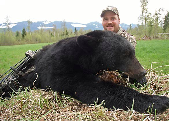 Black Bear Hunting in BC