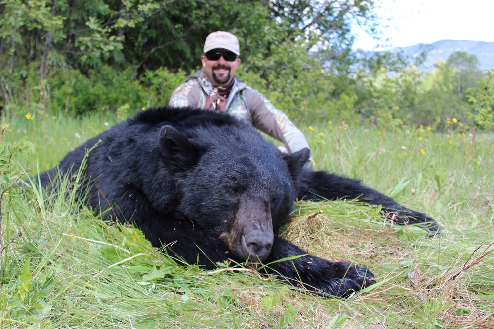blackbear35.JPG