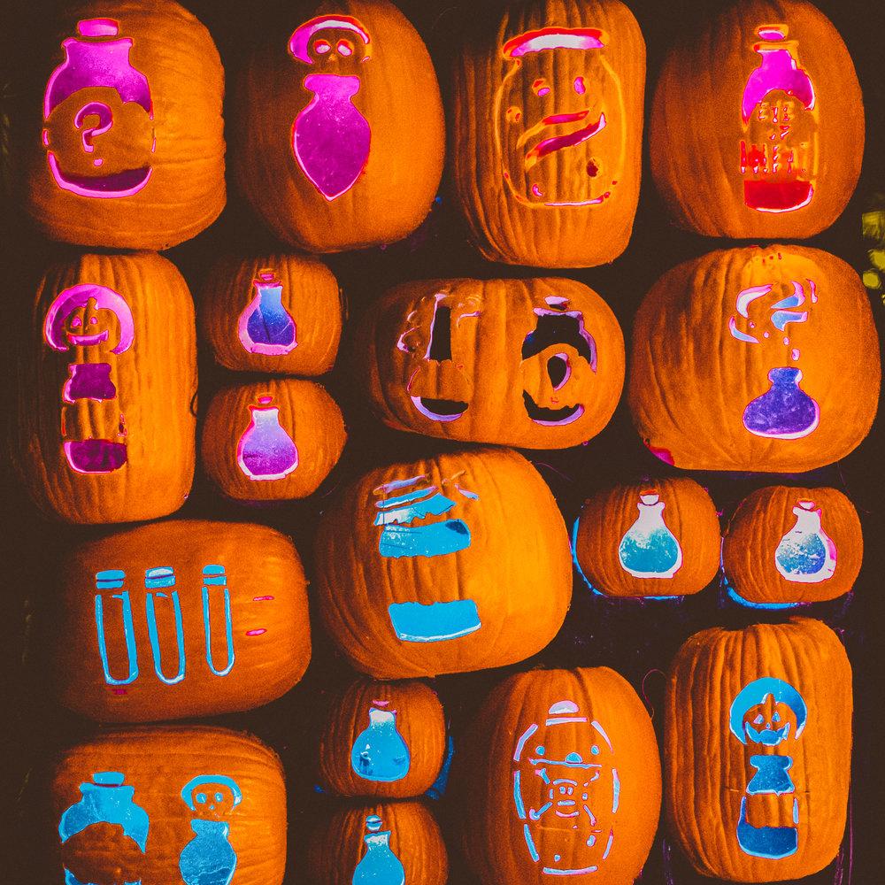 Great Pumpkin Festival 15.jpg