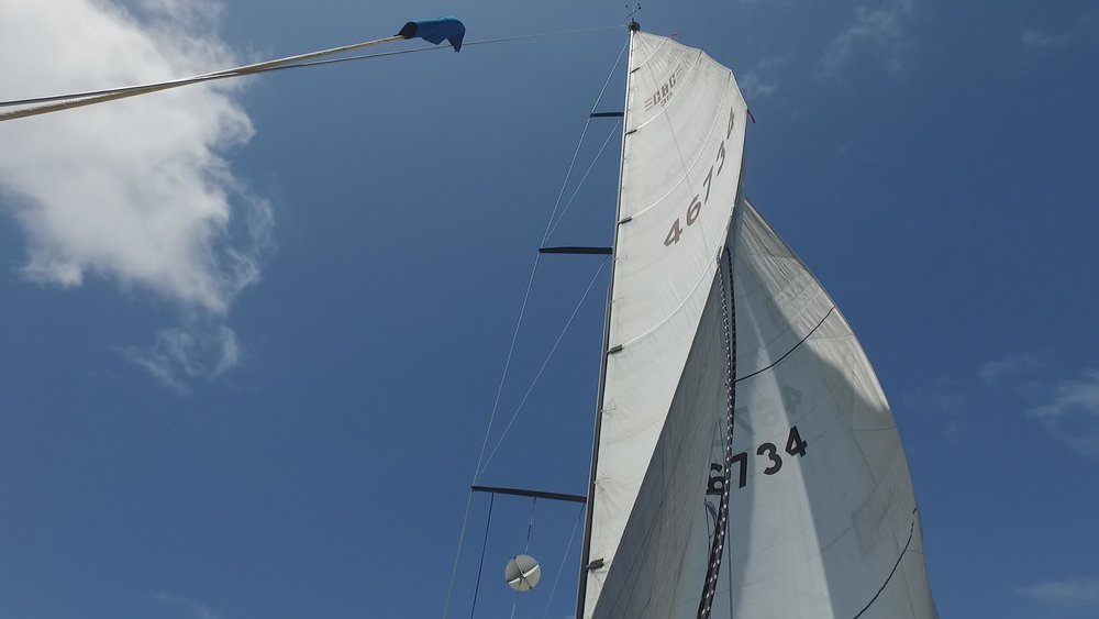 Note how the leech of the main, in the area of the sail number and above it, is twisted and far more open than the portion of the leech below it.  Twisting off the main, as shown here, is just one way to depower the mainsail.