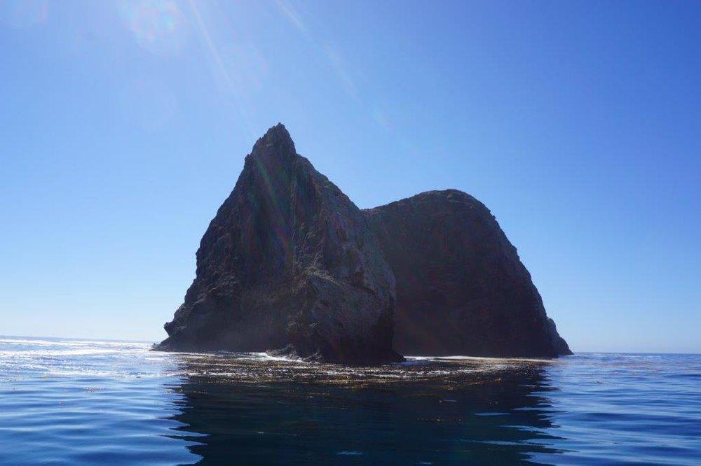 Sutil Island, SW of Santa Barbara Island