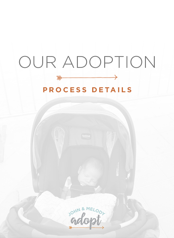 Our Adoption Process Details
