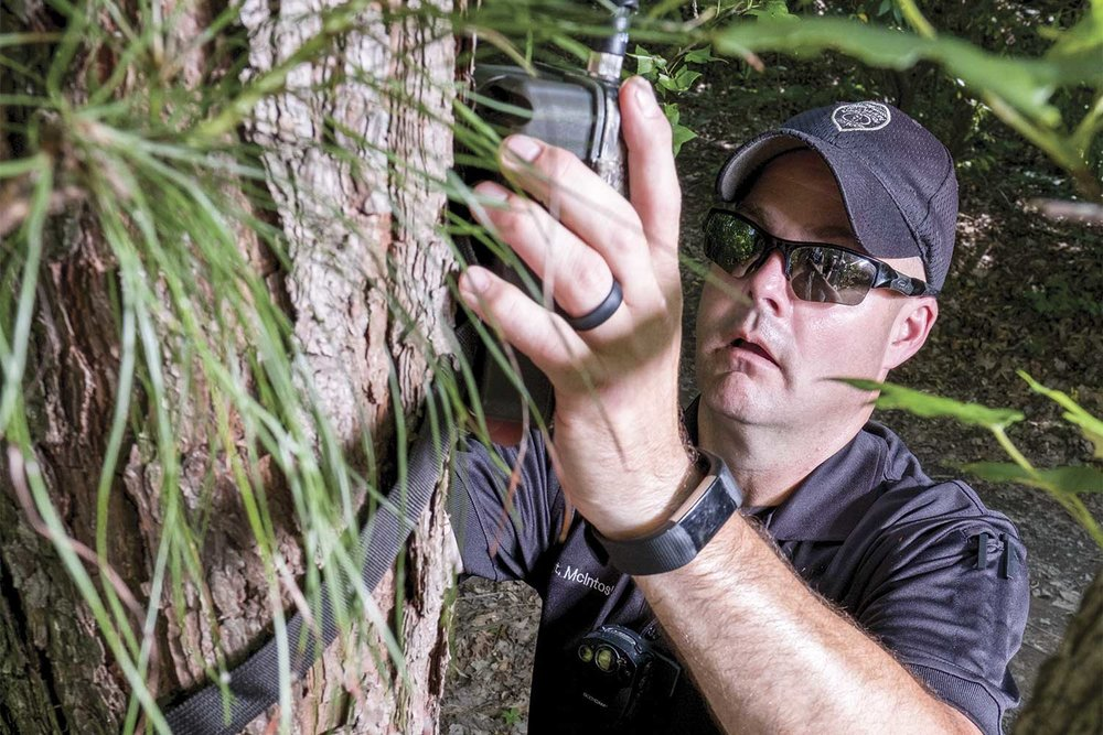 Sgt. Scott McIntosh places a Covert Code Black cell phone camera on a tree in the Peabody Wildlife Management Area. The device is used by McIntosh to monitor activity in the immediate area. It allows McIntosh the freedom to move from spot-to-spot and cast a wider net as photos from the device are sent to his cell phone. (Photo by Jim Robertson)
