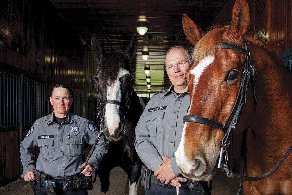 Kentucky Horse Park Police Capt. Lisa Rakes and Sgt. David Johnson pose with officers Oliver, a Paint/Shire/Thoroughbred cross, and Sunny, a Belgian/Thoroughbred cross outside the police department's stable at KHP. (Photo by Jim Robertson)
