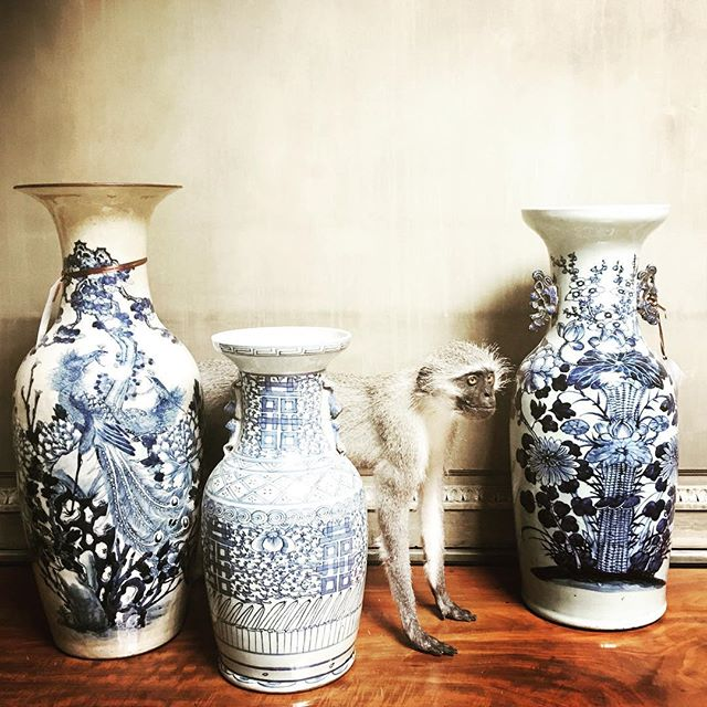 "EXOTIC TREASURES 💙💙💙 Summer feels a whole lot cooler with  a piece or two of #ChineseExport porcelain. #BalusterVases in various handpainted motifs and sizes, bring imagination and foreign locales home. #19thCChinesePorcelains #WhySettleForDoubleHappiness #MultiplyYourJoy#ItOnlyTakes3PiecesToMakeACollection 💙💙💙From L to R; Phoenix Vase 2'h x 10""diameter/ Double Happiness Vase 17""h x 9""diameter/ Lotus Vase 23""h x 9""diameter. 💙💙💙"