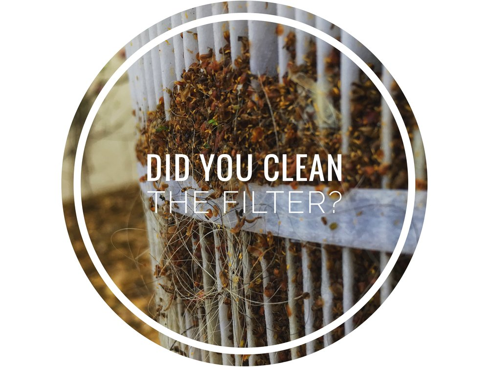 The Importance of Filtration - Having a clean filter will increase filtration surface area helping filter out and remove more algae and other organic matter. A clean filter also produces greater water and flow keeps pools clear as algae growth is inhibited by flowing water.