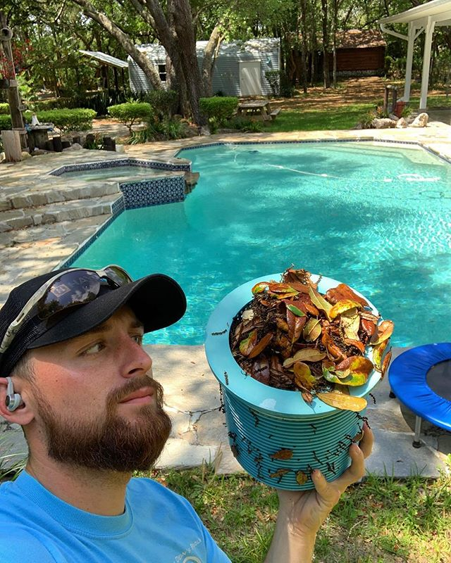 Everything we do is about flow . If you've got lots of trees around the pool like this home does checking skimmers is going to be your savior even if you have a quality pool service company . It takes 30 seconds and even just 1 additional time per week can help keep water flowing, keeping everything clean and clear
