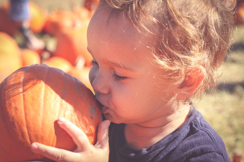 pumpkin68.JPG