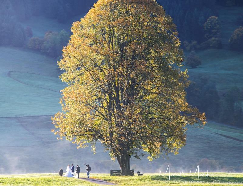 Photographer Landscape Photography Wedding in Germany Marys Mark Photography.JPG