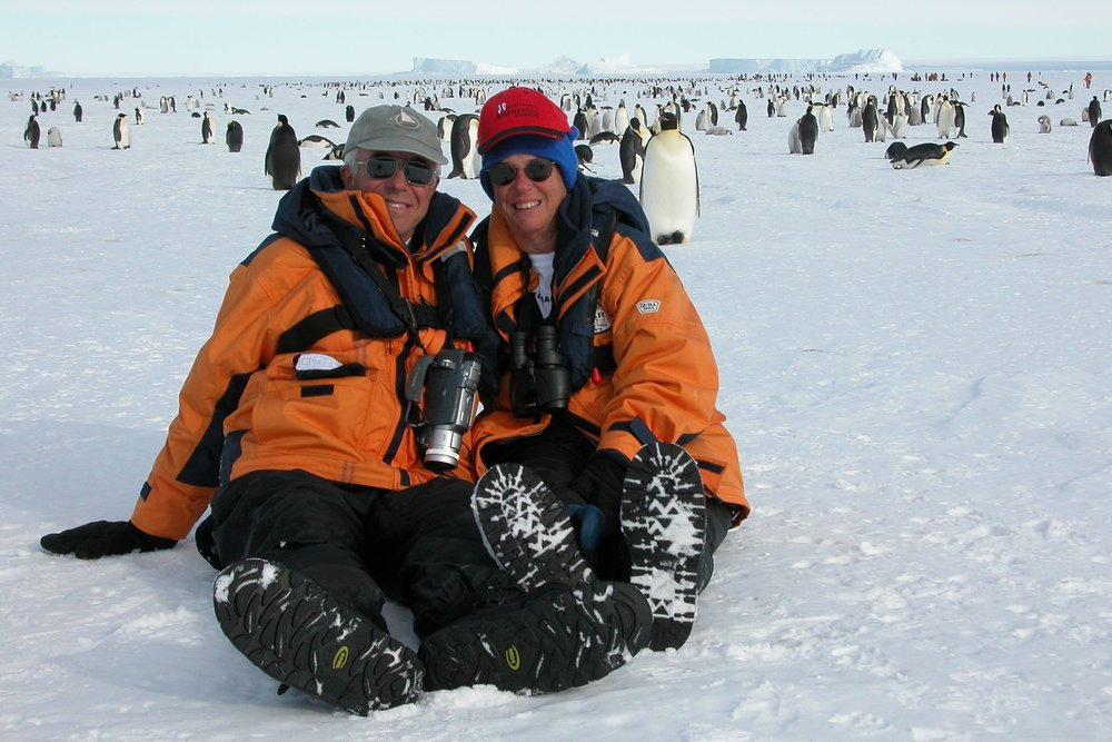 Luxury Travel Consultant Antartica Penguins Marys Mark.jpg