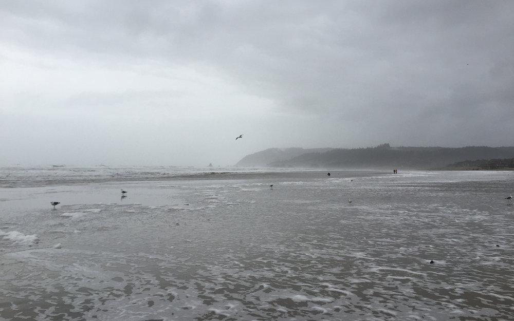 2015-oregon-coast-07.jpg