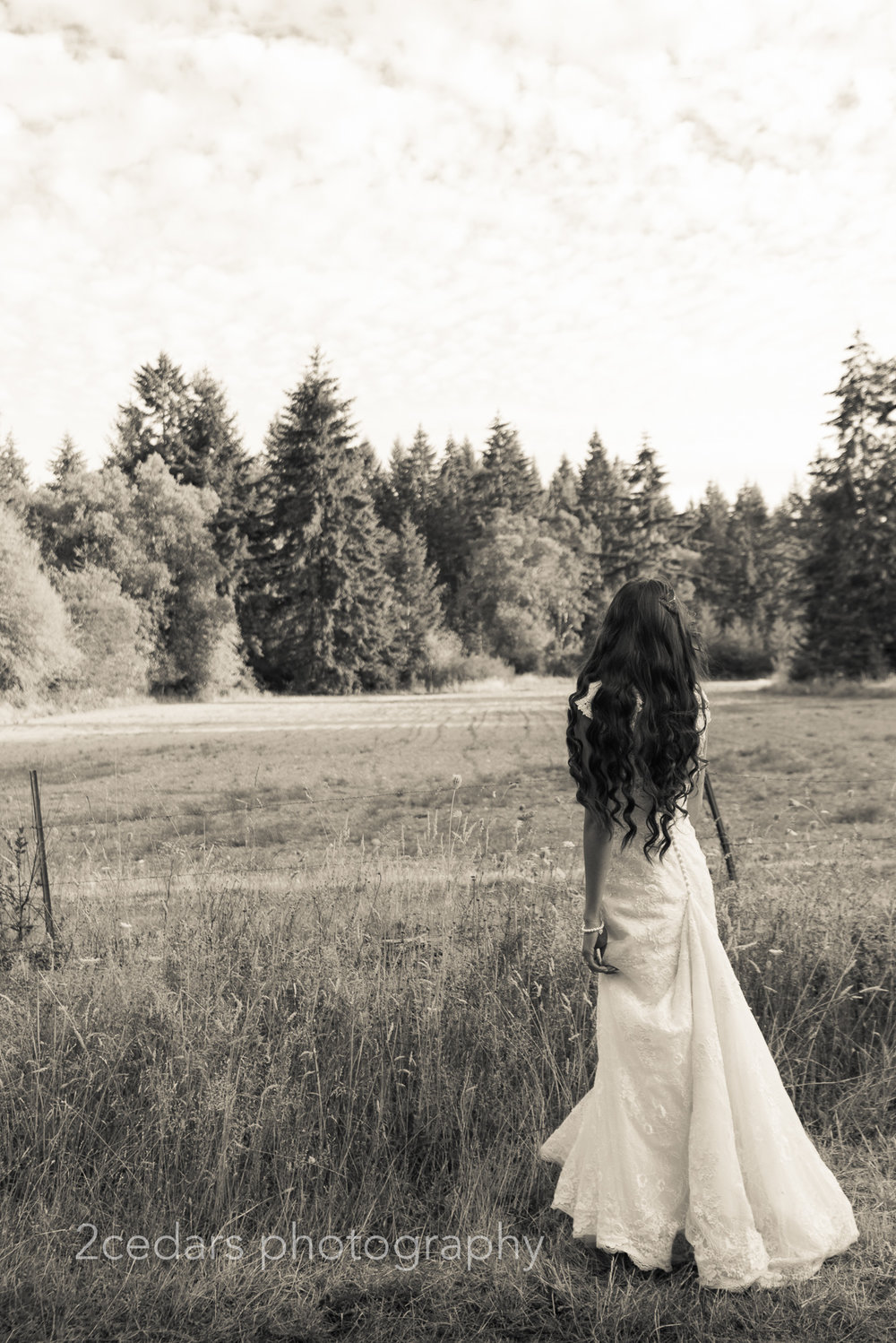 black and white bride looking out over a field outdoor country wedding