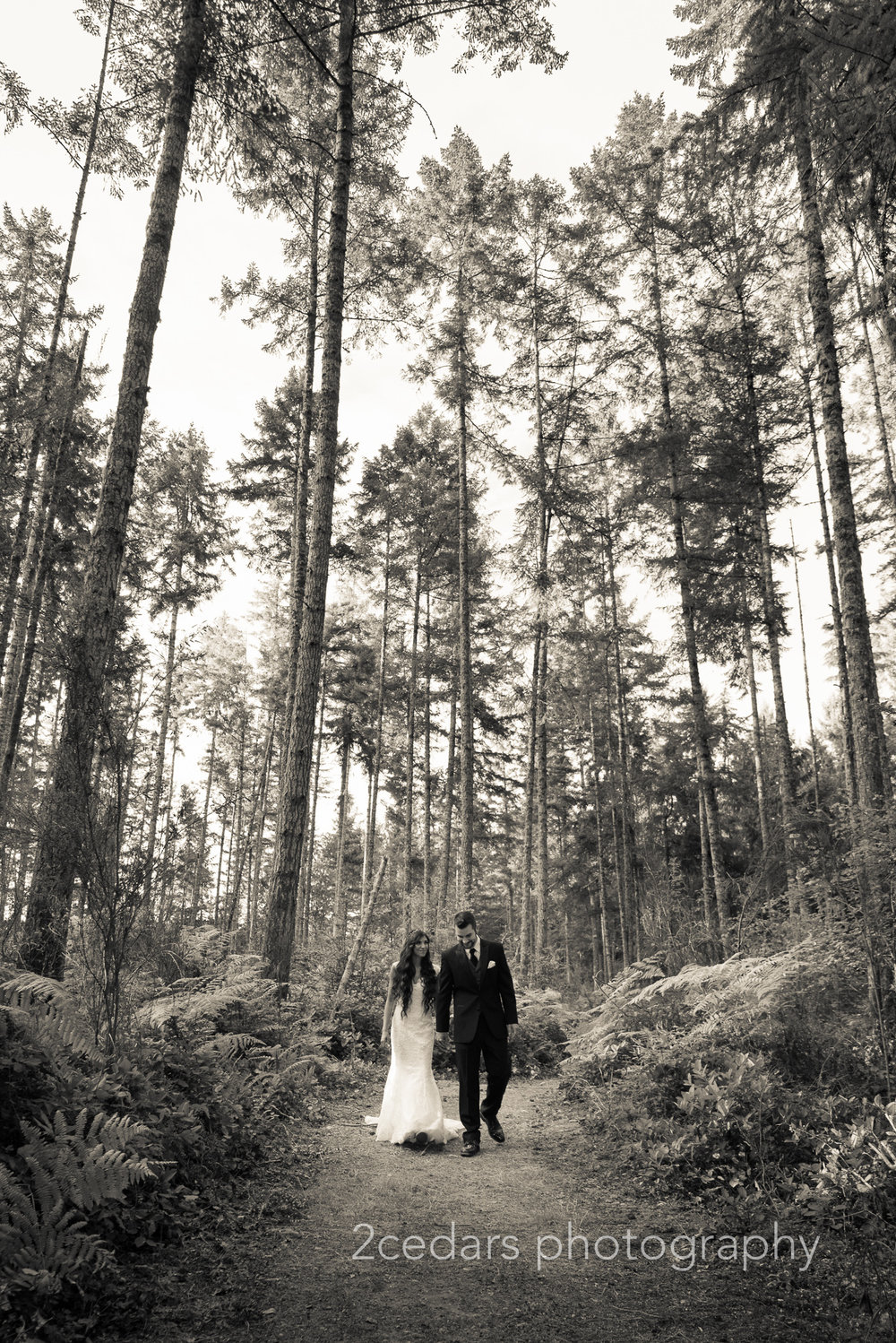 Black and white bride and groom in the forest