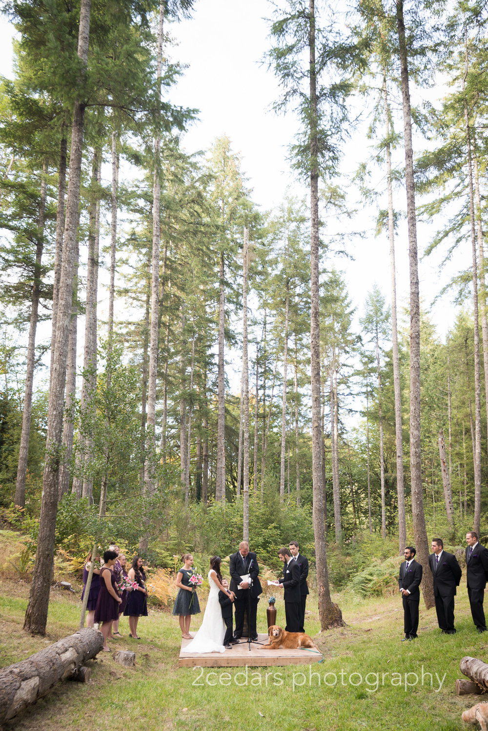 Pacific Northwest Woodland Wedding at Grand Farm, Vaughn, WA